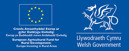 This is the logo of the project sponsors, the Welsh Government and the EU